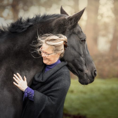 coach paard tessaloma